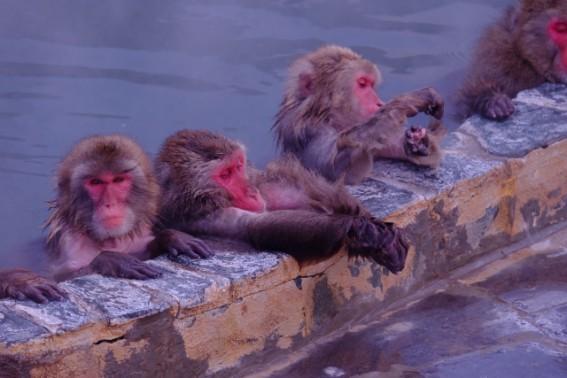 寒い冬には、温泉と暖房が不可欠!?