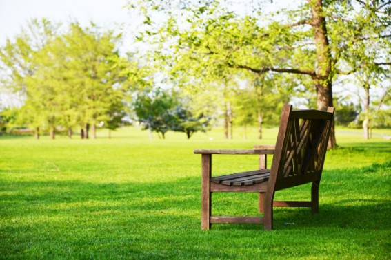 木と土に囲まれるって、気持ちが良いですね