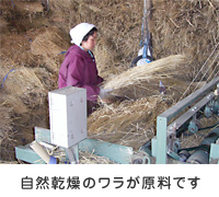tatami_p04.jpg