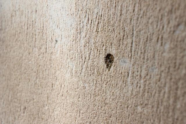 爪とぎ 壁