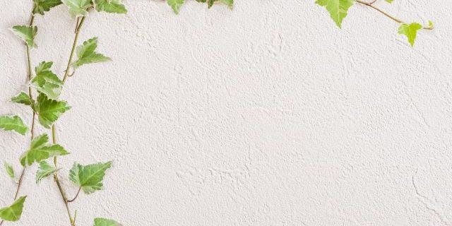 塗り壁は表情がある