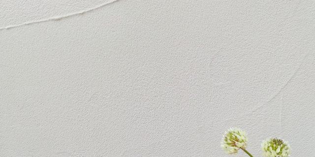 塗り壁サンプル
