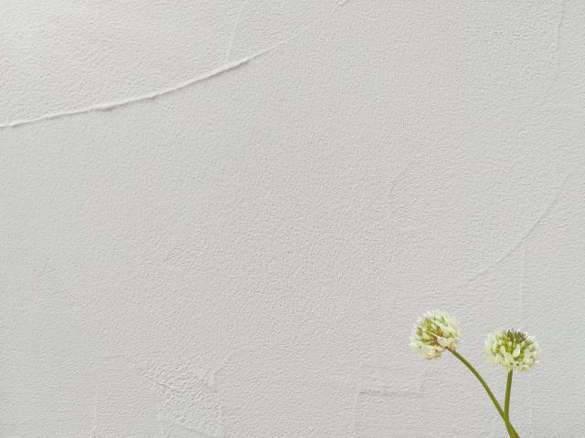 珪藻土100%の塗り壁ってあるの?