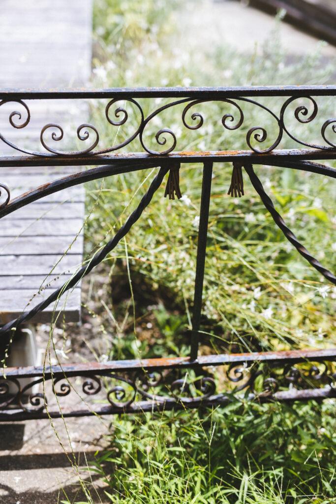 庭の写真n