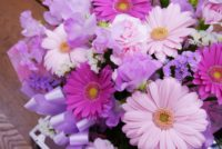 シンプルな部屋にお花を飾れるようになりたい!
