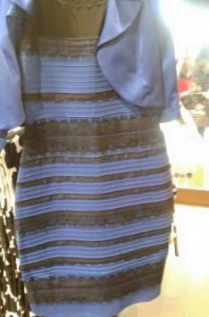 皆さんには何色のドレスに見えますか?