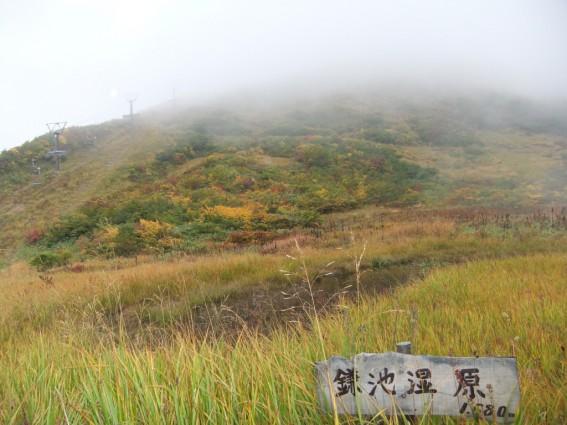 白馬八方尾根の上は雨模様で霧だらけでした