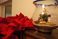 風水金魚鉢
