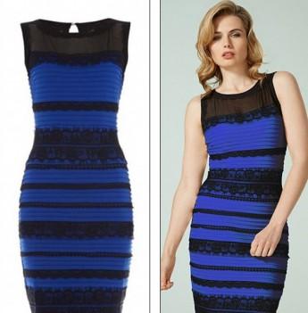 正解は青地に黒いレースのドレス